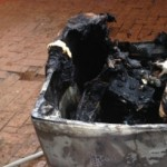Samsung Washing Machines are catching fire in Australia
